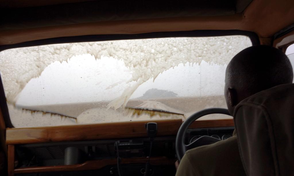 Rain to Ngorongoro