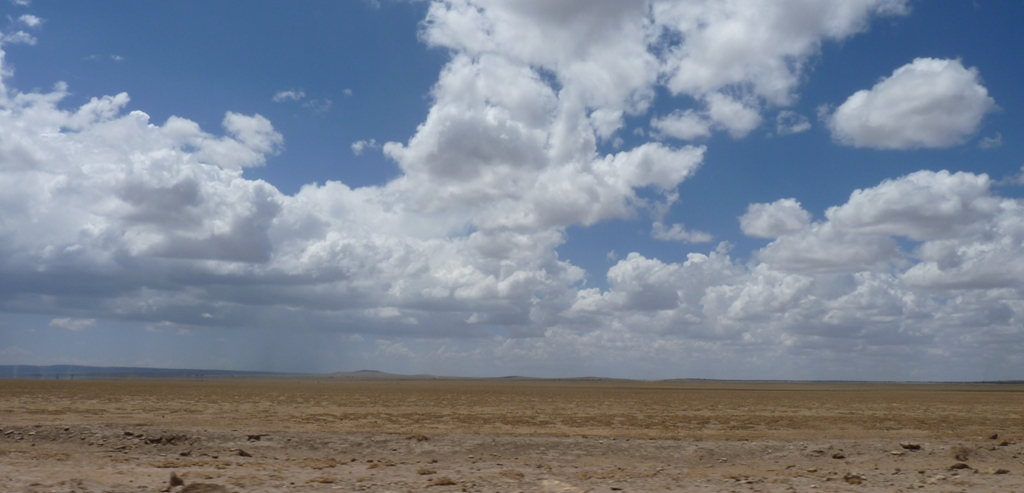 Dry Serengeti Plains