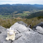 On the Tataka Hill