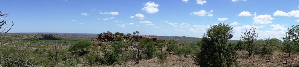 Mapungubwe Park Panorama