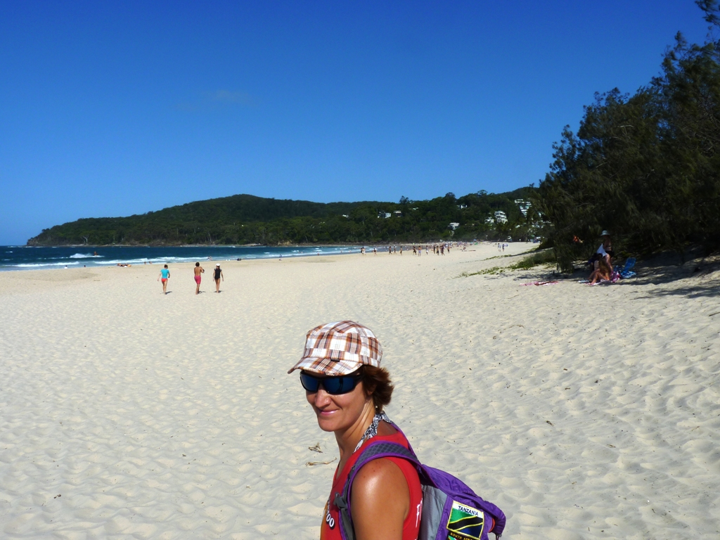 Beautiful Noosa beach