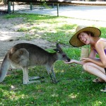 Hand feeding a kangaroo - very tickly!