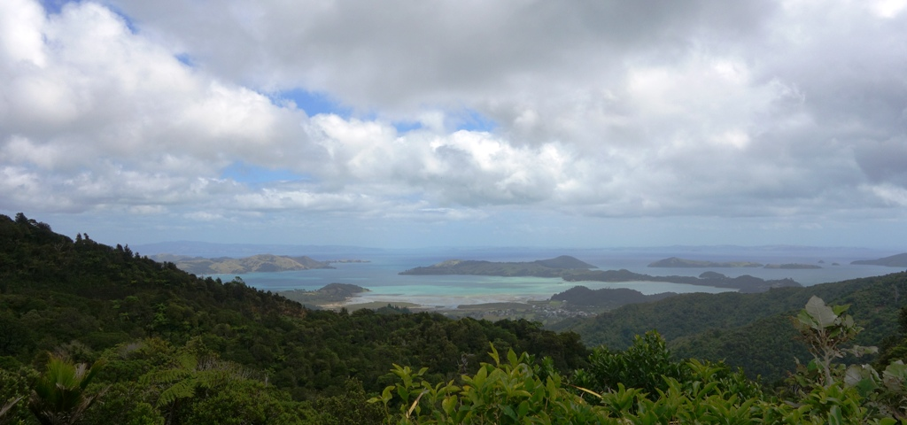 View from the drive up and down to Whitianga
