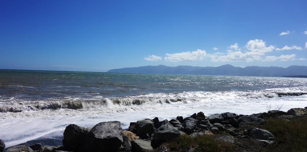 Palliser Bay