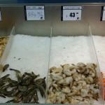 All sorts of prawns