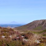 Mount Taranaki way in the distance