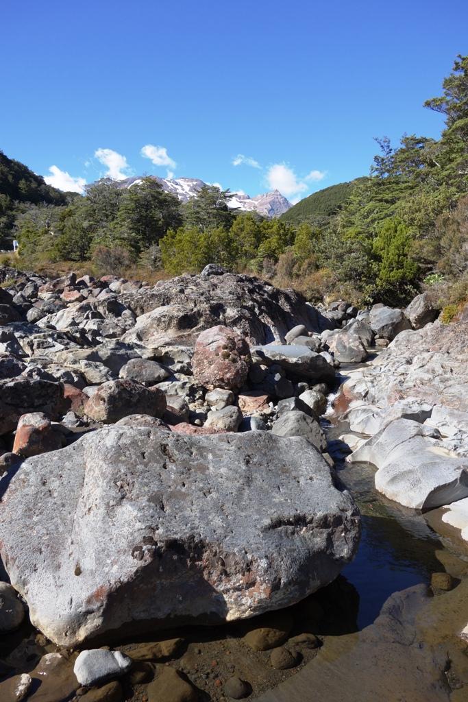 Tongariro – Gollum and the fish