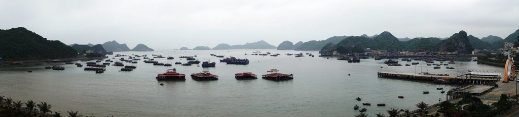 Cat Ba harbour