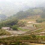 03. Rice terraces in Sapa Vietnam