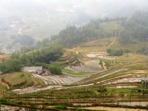 03. Rice terraces in Sapa Vietnam