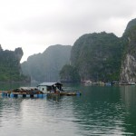 06. Lan Ha & Ha Long Bay