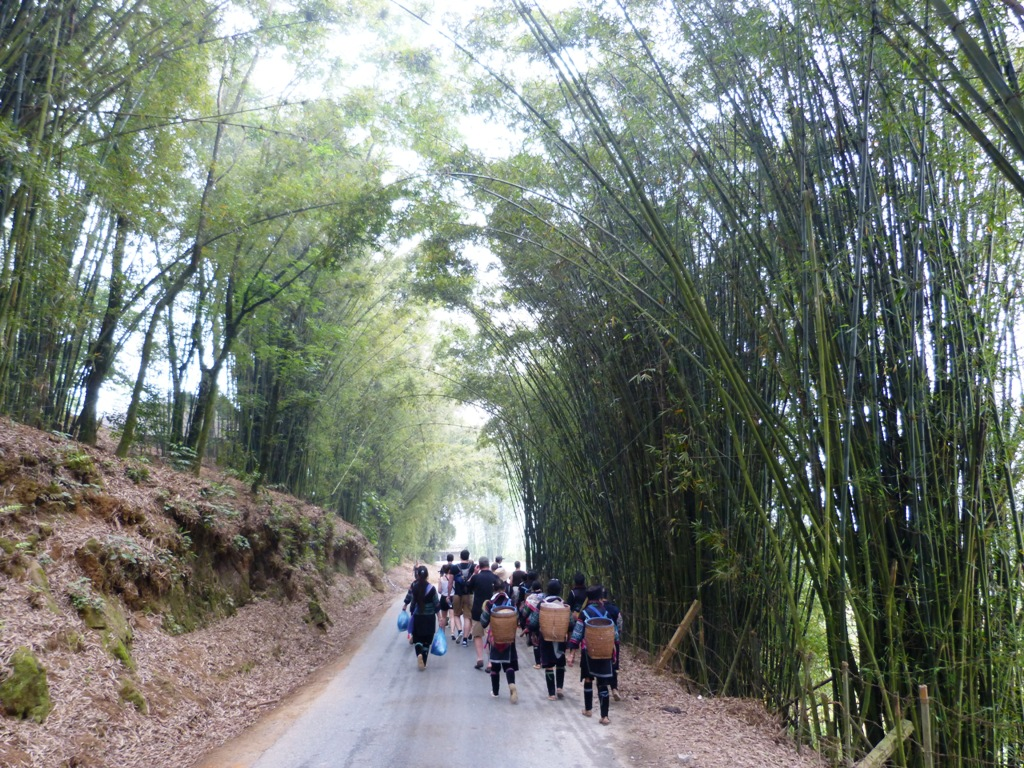 Group of H'mong women walking with us towards their village
